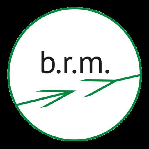 brm IT Service Logo